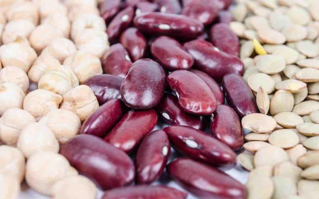 La cuisine macrobiotique : secret de la longévité