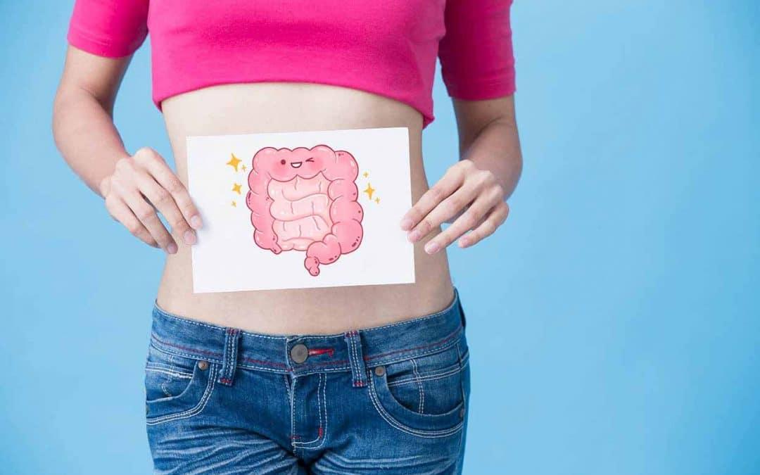 Qu'est-ce que le microbiote intestinal et quel est le rôle des pré- et probiotiques ?